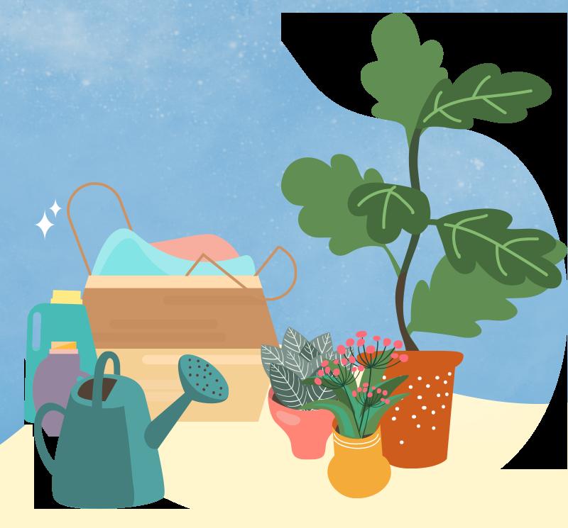 Creative Chronicles Series 3 - Nurul Plants